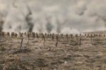 100th anniversary of the Battle of Polygon Wood