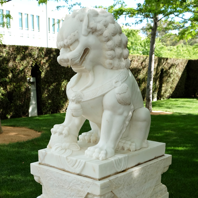 Chinese male lion in the Parliament House formal garden