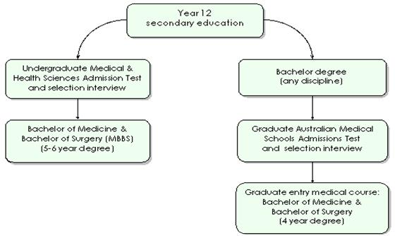 Pathways to medical school