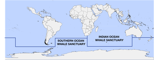 Whale sanctuaries