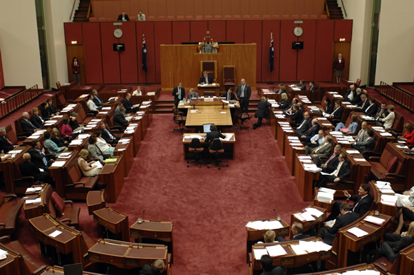 A division in the Senate (Photo courtesy of AUSPIC)