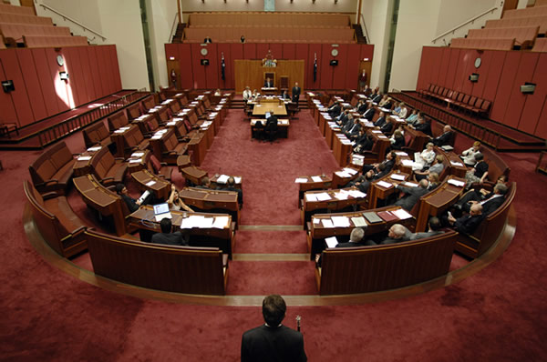A division known as a 'Mickey' where the major parties combine to vote against a minor party (Photo courtesy of AUSPIC)