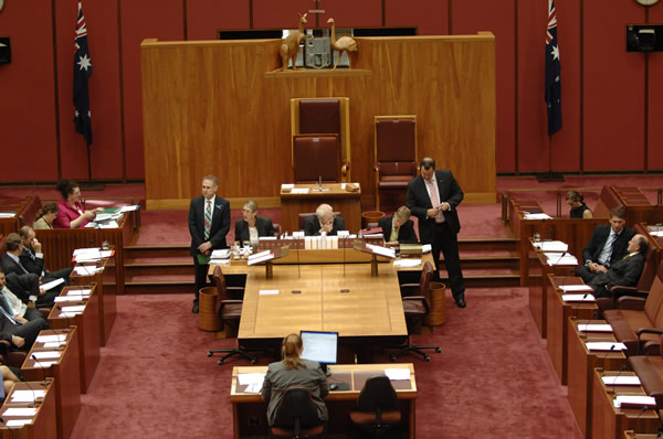 A division in committee of the whole (Photo courtesy of AUSPIC)