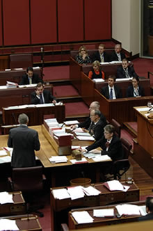 A committee of the whole stage on a bill. The committee is chaired from the chair at the table between the clerks (Photo courtesy of AUSPIC)