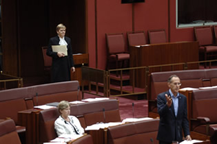 The Serjeant-at-Arms waiting at the bar of the Senate with a message (Photo courtesy of AUSPIC)