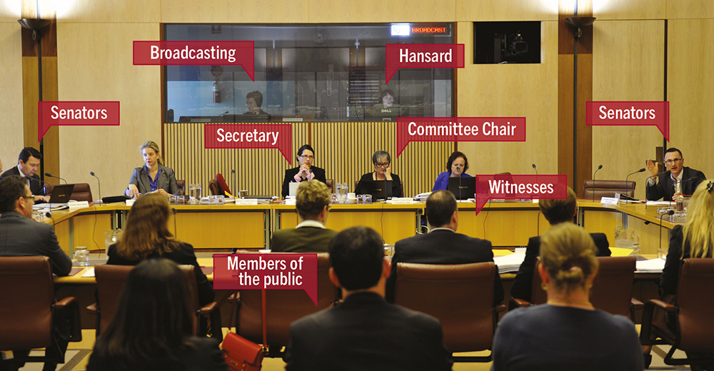 Committee hearing with participants labelled