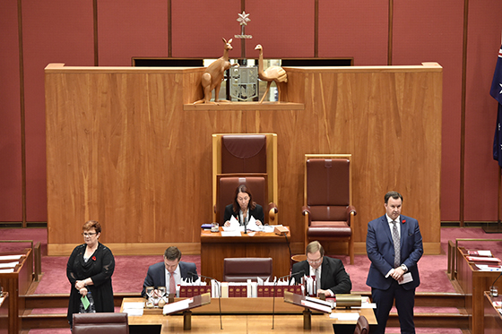 No 6 The President Of The Senate Parliament Of Australia