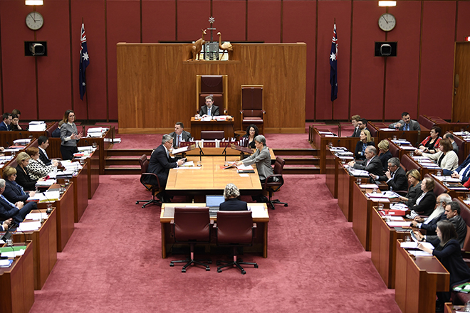 Senate Brief No. 14 - Senator the Hon. Fiona Nash answering a question during question time