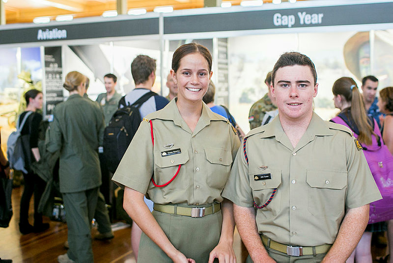 The ADF Gap Year: progress so far