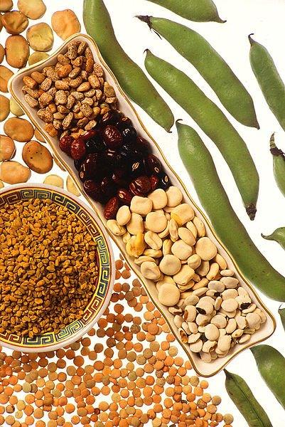 A selection of various legumes.