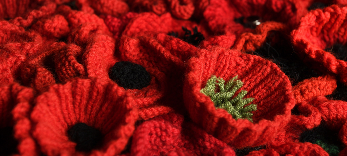 Detail of knitted poppies from the display