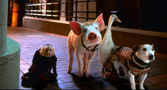 Characters from the film Babe: Pig in the City