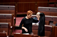 Pauline Hanson wears a burqa into Question Time